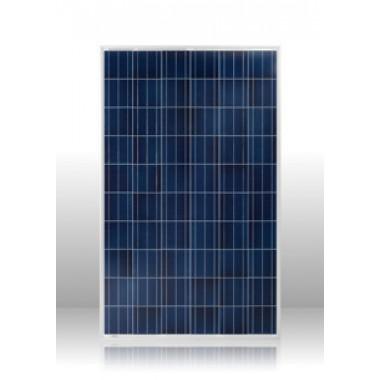 Солнечная батарея (панель) ALTEK ALM-265P-60, 265ВТ, 24В поликристаллическая